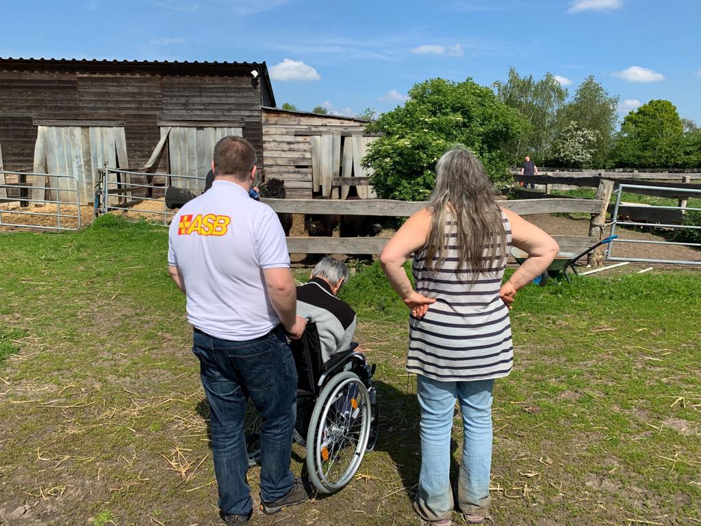 Wunscherfueller Benjamin Schiller und Arche-Chefin Marian Korroch begleiten Ali Machkamon zur Pferdekoppel, wo die Shetlandponys schon auf ihn warten